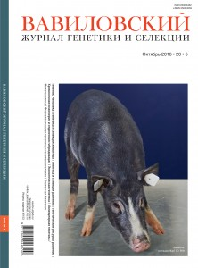 Cover_20_5